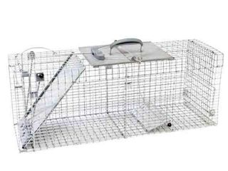 Havahart 1092 Collapsible One Door Easy Set live Animal Cage Trap for Raccoons  Stray Cats  Groundhogs  Opossums  and Armadillos