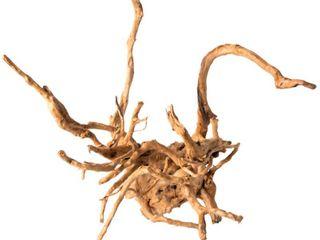 Galapagos  05319  Spider Wood  Natural  12   24