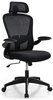Office Chair  Tribesigns Ergonomic Office Chair with 2D Adjustable Headrest High Back Mesh Desk Chair with lumbar Support  Skate Style Wheels Casters  Thick Seat Cushion for Home Office