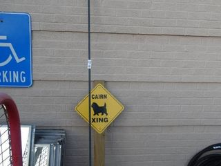 Sheppard s hook   dog crossing sign