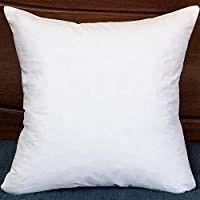 Square Decorative Throw Pillow Insert Down and Feather Pillow Insert 20x20