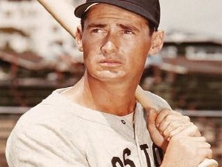 Ted Williams Collectibles