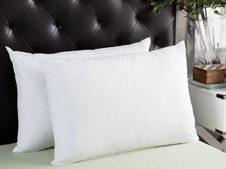 Splendorest Jumbo Sham Stuffer Pillows  Set of 2    White