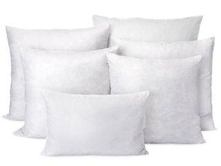 1 ONlY  Down Pillow Insert