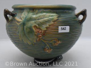 Roseville Bushberry 465 5  hanging basket  green
