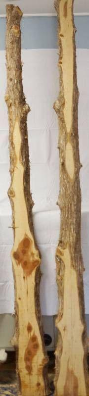 2 Cedar Slabs   2  Thick  6  long
