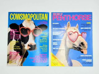 Super Fun lot  1991 The Best of PENTHORSE and 1987 COWSMOPOlITAN Magazines   Both have Centerfolds
