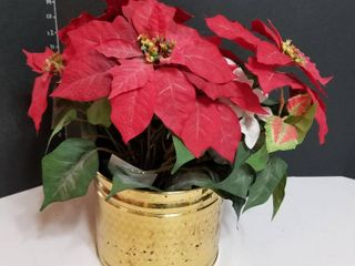 Brass pot with poinsettias