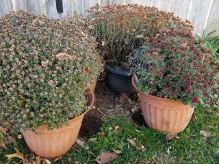 Decorative plastic pots set of 4