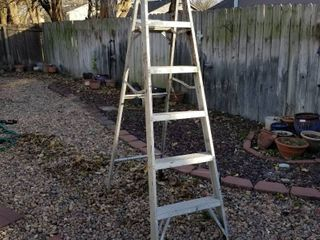 Aluminum 6 ft step ladder