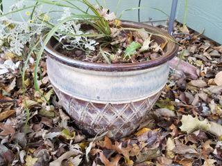 Decorative pot 15  dia x 13