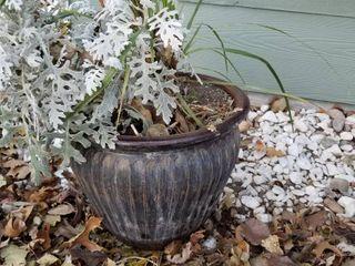 Decorative pot 14  dia x 12