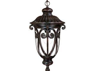 Acclaim lighting Naples Collection Hanging lantern 1 light Outdoor Marbleized Mahogany light Fixture  Retail 164 00