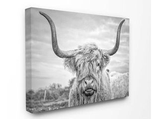 Stupell Industries Black and White Highland Cow Photograph Canvas Wall Art  30 x 40  Design by Artist Joe Reynolds