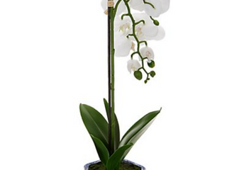 23  Faux Orchid Plant in Decorative Ceramic Pot by Valerie