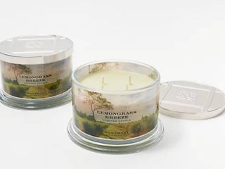 HomeWorx by Harry Slatkin S 2 lemongrass Breeze 4 Wick Candles