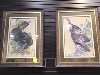 2  Framed Prints of Turkeys