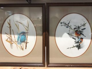 2  Framed Bird Watercolors  18 x 15
