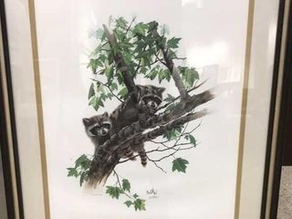 24  x 29  Raccoon In Tree Print  By Balke