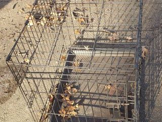 Pet Cage   19 x 24 x 21 in  tall