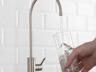 Puritaa Drinking Water Dispenser Beverage Kitchen Faucet in Spot Free Stainless Steel