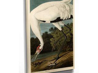 32x48 Wexford Home Audubon  Hooping Crane  Giclee Canvas Wall Art Retail  127 99