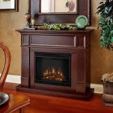 Camden Fireplace insert only