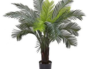 3 cycas tree w 15lvs uv Resistant
