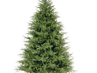 National Tree Frasier Grande Fir Tree  7 ft  Green