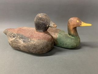 Pair of Working Shot Over Decoys
