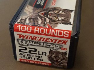 100 ct   22lR bullets  Winchester Wildcat