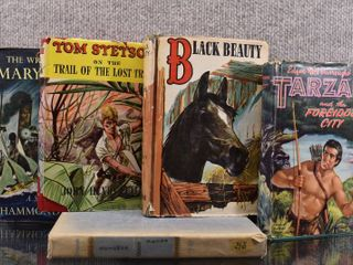 Vintage lot of 5 Hardback Books Black Beauty  Tom Stetson  Tarzan  Mary Deare   Solomon