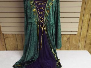 Woman s hocus pocus costume  size Xl