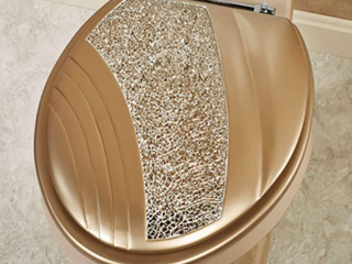 Touch of Class   Gold Elongated Toilet Seat