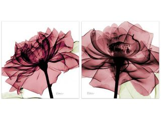 Chianti Rose I   II Flower Wall Art Printed on Frameless Free Floating Tempered Glass Panel   Pink White  Retail 182 99