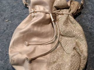 Champagne Toned Cache Bag