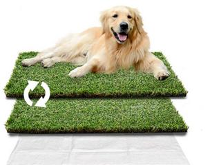 HQ4us Pet grass pee pad