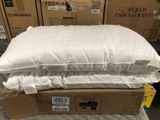DreamNorth Queen Gel Pillow Set Of Two