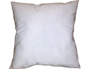 24  x 24  Pillow Inserts   Set of Two