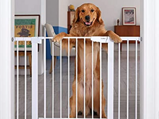 Cumbor 46AaA Auto Close Safety Baby Gate  Extra Tall and Wide Child Gate  Easy Walk Thru Durability Dog Gate for The House  Stairs  Doorways  Includes 4 Wall Cups  2 75 Inch and 8 25 Inch Extension   Not Inspected