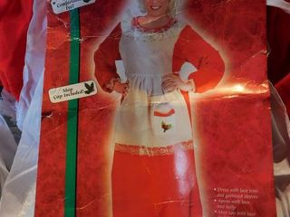 Mrs  Claus Costume in Original Packaging