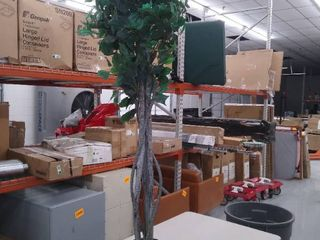 Artificial Green Vicious Tree    5 1 2 Ft