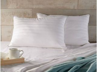 Northern Nights Set of 2 Queen Hotel luxury Plush or Firm Gel Pillows