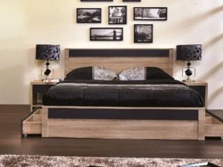 Carbon loft Hester Natural Tone low Profile Storage Bed