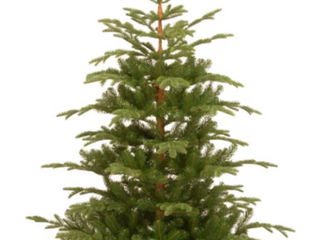 7 5  Green Spruce Artificial Christmas Tree