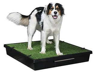 PetSafe Pet loo Portable Dog Potty  Alternative to Puppy Pads  large  32 5  x 32 5  x 5 25