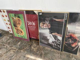 11  Framed Posters