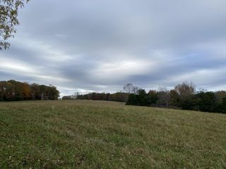 AUCTION COMING SOON: 185+/- Acres in Tracts - McMinnville in Warren County, Tennessee