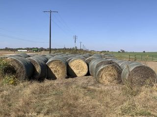 68   RD  BAlES  WHEAT HAY NET WRAPPED 74