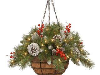 National Tree Company   Hanging Baskets